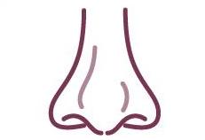 客製化隆鼻手術